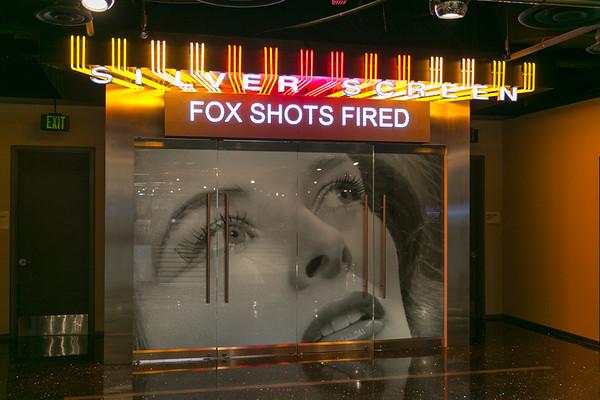 Shots Fired Premiere