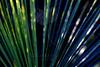 Serenity in Blue<br /> <br /> 112313_002765 ICC sRGB 16x24 pic