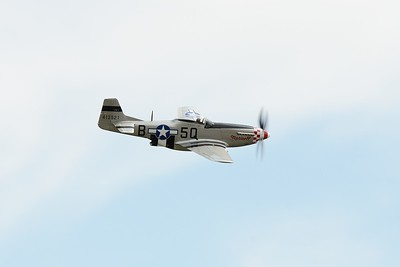 P51D Mustang Marinell