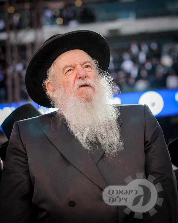 Rabbi Yaakov Perlow, Novominsker Rebbe
