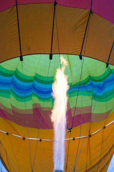 Balloons Over Napa