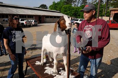 Smith County Junior Livestock Show