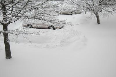 Snow 5 March 2015