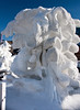 Snow Carving-19