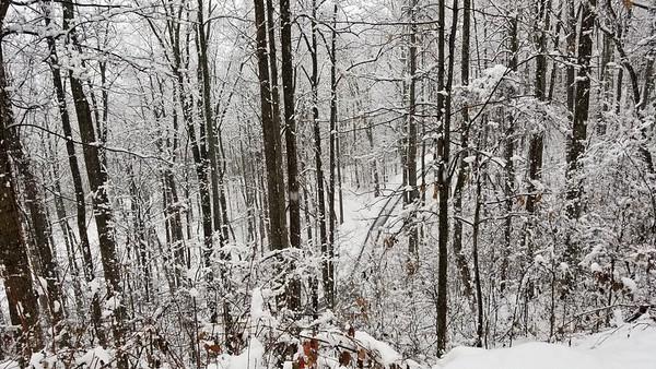 snow120817nr1