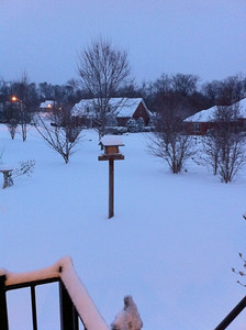 Snow from back patio.