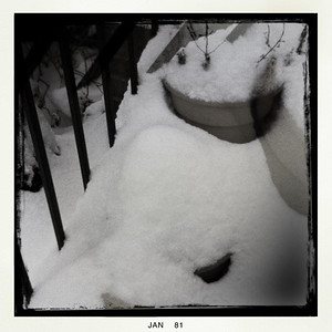 Flower pots under snow on back steps.  Guess the cats won't be having some catnip!
