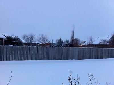 Snow.  Back yard.