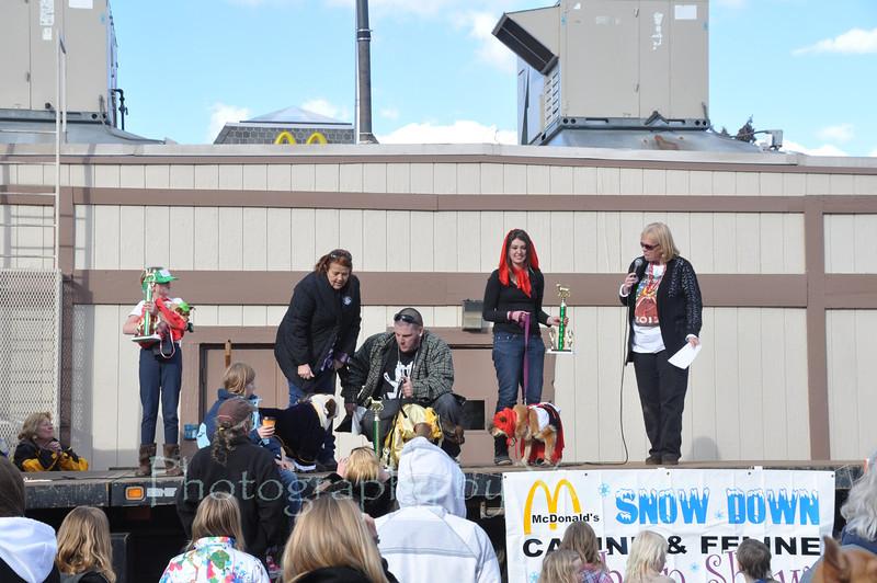 Winners of the 34th annual Snowdown Canine Fashion Show!