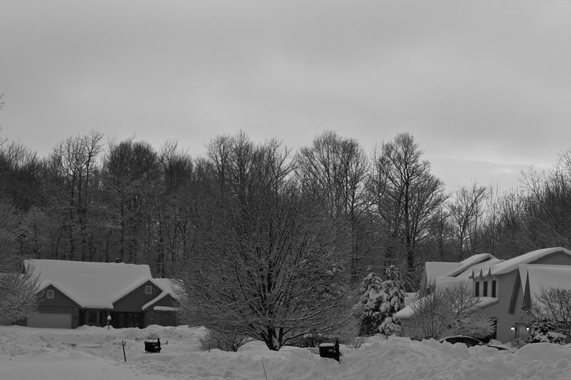 Snowicane 2010-0116.jpg