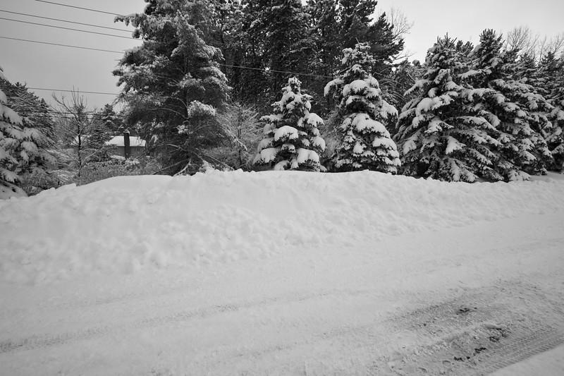 Snowicane 2010-0109.jpg