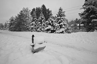 Snowicane 2010