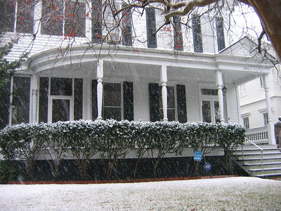 On Sunday, 2 days before snowing in Las Vegas it was snowing in New Orleans. Here is a photo of my parents house with the cut-crystal front doors and 12 foot ceilings in New Orleans where it is located next to Audubon Park - photographed by my sister Sue