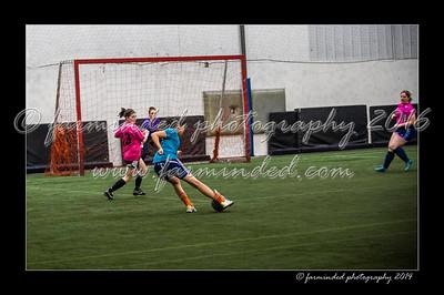 03/19/2014 Ak Goal Diggers  V.s.  Polar Kicks