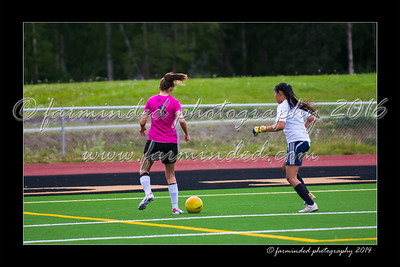 DS7_0005-12x18-07_2014-Soccer-W
