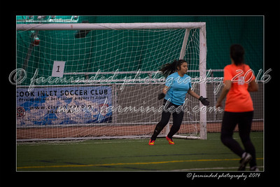 DS7_6061-12x18-11_2014-Soccer-W