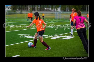 DSC_5553-12x18-06_2014-Soccer-W