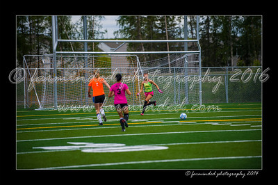 DSC_5638-12x18-06_2014-Soccer-W