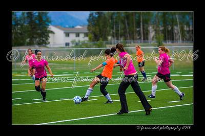 DSC_5622-12x18-06_2014-Soccer-W
