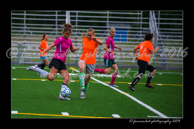 DSC_5574-12x18-06_2014-Soccer-W