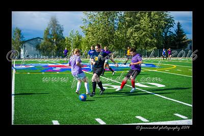 DSC_3319-12x18-06_2014-Soccer-W