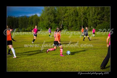 DSC_2319-12x18-06_2014-Soccer-W