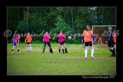 DSC_2417-12x18-06_2014-Soccer-W