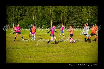DSC_2321-12x18-06_2014-Soccer-W