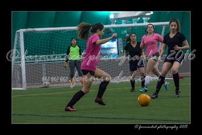 DS7_4424-12x18-02_2015-Soccer-W