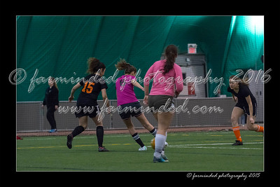 DS7_4467-12x18-02_2015-Soccer-W
