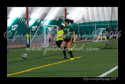 DS7_7724-12x18-03_2015-Soccer-W
