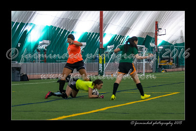 DS7_7730-12x18-03_2015-Soccer-W