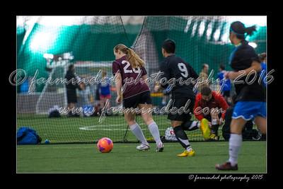 DS7_0341-12x18-03_2015-Soccer-W