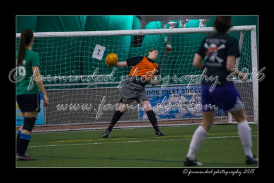 DS7_4091-12x18-04_2015-Soccer-W