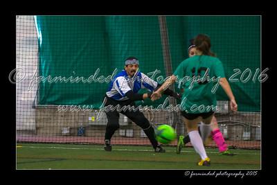 DS7_2441-12x18-04_2015-Soccer-W