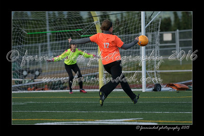 DS7_6936-12x18-06_2015-Soccer-W