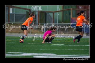DS7_7066-12x18-07_2015-Soccer-W