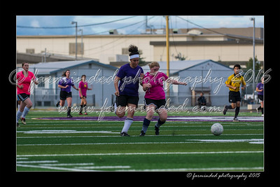 DS7_0082-12x18-07_2015-Soccer-AKGD-W