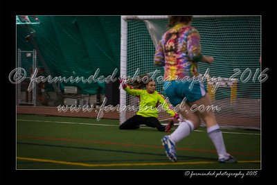 DS7_2228-12x18-10_2015-Soccer-W