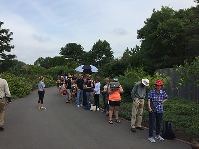 A very small portion of the line to get viewing glasses. About 3,000 people came to view the eclipse.