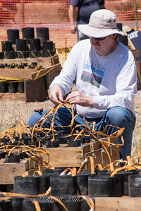 Connecting all the fireworks wiring.
