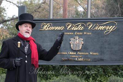 9:22am The Count of Buena Vista