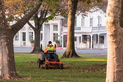9:28am  Moving the lawns in the Plaza.
