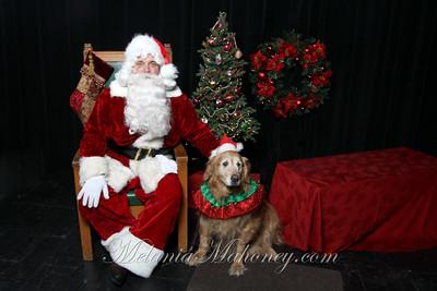 120410 Santa Paws Pet's Lifeline Christmas Shoot