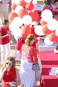 Red&WhiteBall_032