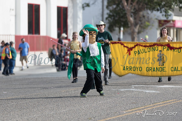 South County Christmas Parade 20171202-1419