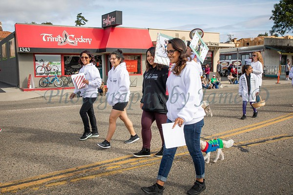 South County Christmas Parade 2018-764