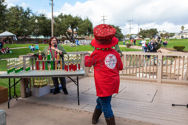 South County Christmas Parade 2018-1834