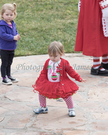 2015_GB_Christmas_Parade_20151205-2687