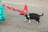 2015_GB_Christmas_Parade_20151205-1412